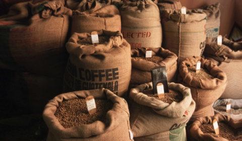 Приобретаем кофе оптом: все лучшее, - в одном проверенном месте