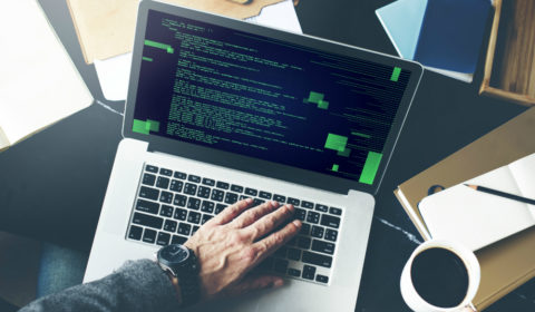 Что дает профессия программиста?